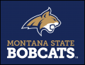 Montana State Bobcats 2013-Pres Alternate Logo 05 iron on sticker