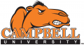Campbell Fighting Camels 2005-2007 Wordmark Logo 05 iron on sticker