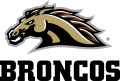 Western Michigan Broncos 2016-Pres Alternate Logo decal sticker