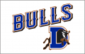 Durham Bulls 2013-Pres Jersey Logo iron on sticker