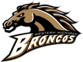 Western Michigan Broncos 1998-2015 Primary Logo decal sticker