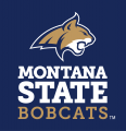 Montana State Bobcats 2013-Pres Alternate Logo 04 iron on sticker