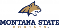 Montana State Bobcats 2013-Pres Alternate Logo 02 iron on sticker