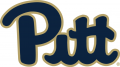 Pittsburgh Panthers 2016-2018 Primary Logo iron on sticker