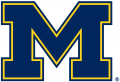 Michigan Wolverines 1996-Pres Alternate Logo 04 decal sticker