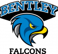 Bentley Falcons 2013-Pres Alternate Logo iron on sticker