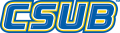 CSU Bakersfield Roadrunners 2006-Pres Wordmark Logo 05 iron on sticker