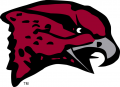 Maryland-Eastern Shore Hawks 2007-Pres Primary Logo decal sticker
