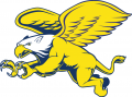 Canisius Golden Griffins 1999-2005 Secondary Logo iron on sticker
