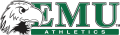 Eastern Michigan Eagles 2003-2012 Alternate Logo 01 iron on sticker