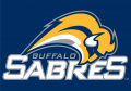 Buffalo Sabres 2006 07-2009 10 Wordmark Logo iron on sticker