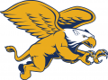 Canisius Golden Griffins 2006-Pres Secondary Logo 02 iron on sticker