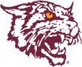Bethune-Cookman Wildcats 2000-2015 Alternate Logo 01 decal sticker