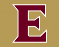 Elon Phoenix 2016-Pres Alternate Logo 02 iron on sticker