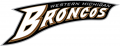 Western Michigan Broncos 1998-2015 Wordmark Logo decal sticker