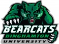 Binghamton Bearcats 2001-Pres Alternate Logo 02 decal sticker