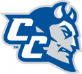 Central Connecticut Blue Devils 2011-Pres Secondary Logo decal sticker