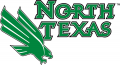 North Texas Mean Green 2005-Pres Primary Logo iron on sticker