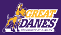Albany Great Danes 2008-Pres Alternate Logo 04 decal sticker