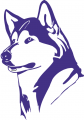 Washington Huskies 1995-2000 Partial Logo decal sticker