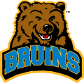 UCLA Bruins 2004-Pres Alternate Logo iron on sticker