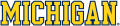 Michigan Wolverines 1996-Pres Wordmark Logo 08 decal sticker