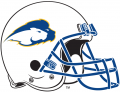 Hofstra Pride 2005-2008 Helmet Logo decal sticker